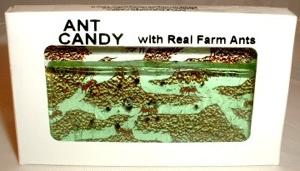 Antcandy